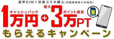 [P20が激安]dポイント×OCN×ひかりTVショッピングの格安スマホ/iPhoneセット 激安購入術